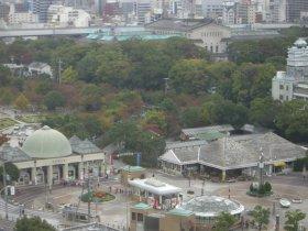 天王寺動物園を見る